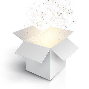 Small/extra small mystery box
